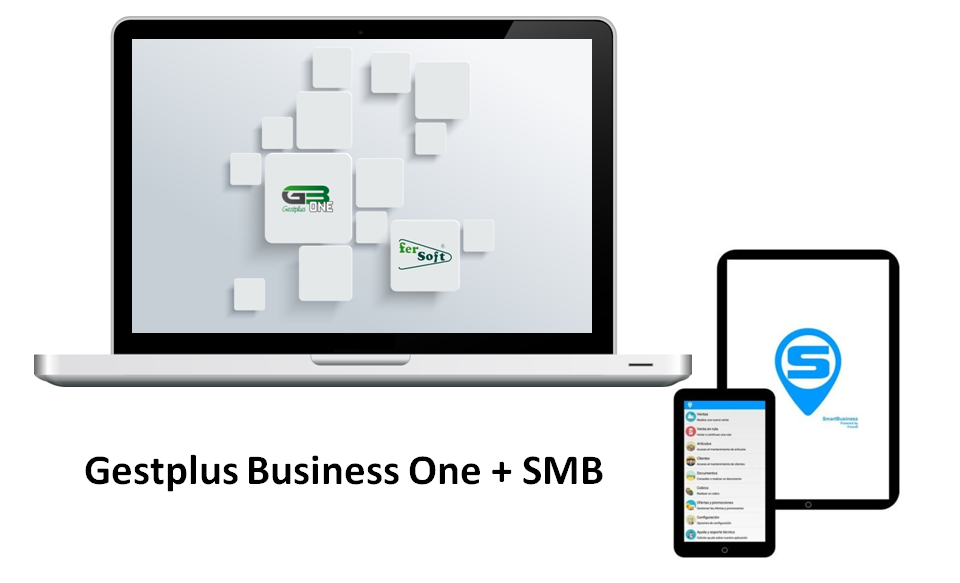 Business One y SMB